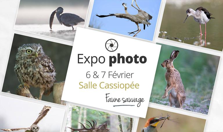 cassiopee-veigne-expo-photo